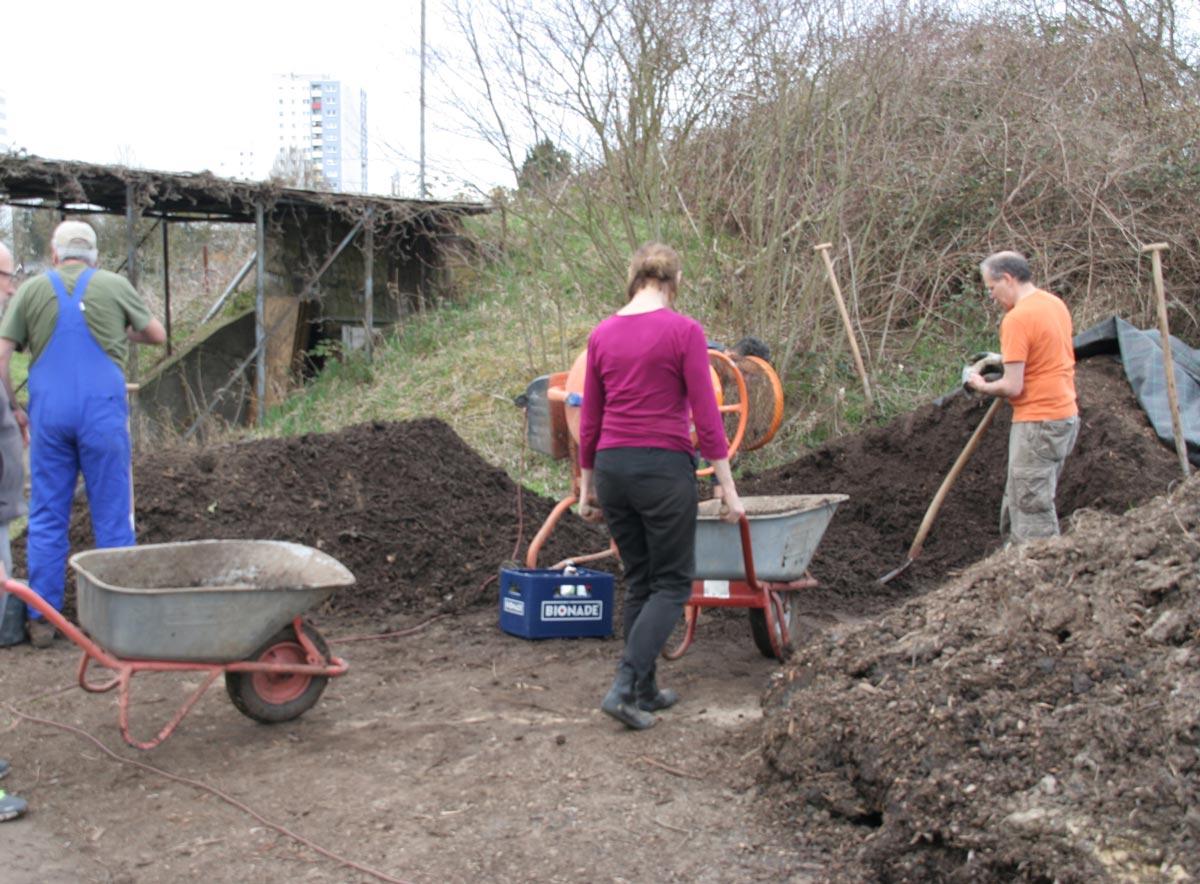 Kompost schaufeln & Lichtwurzeln sonnen