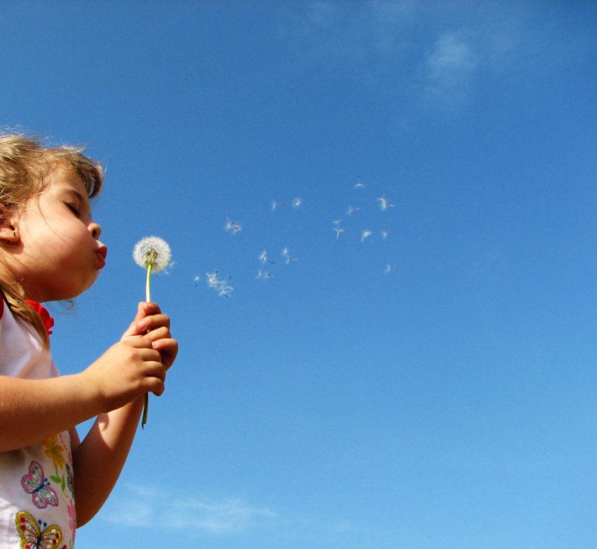 Kind mit Pusteblume - Wind - Luft